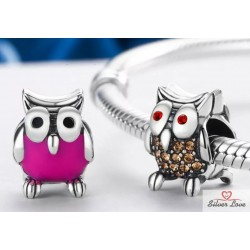 The Wise Owl Charm